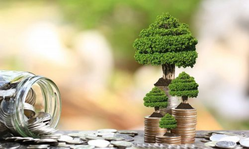 When Can You Think Of Selling Your Mutual Funds?